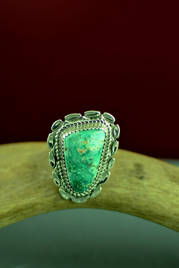 Will Denetdale Apache Turquoise Rings Navajo