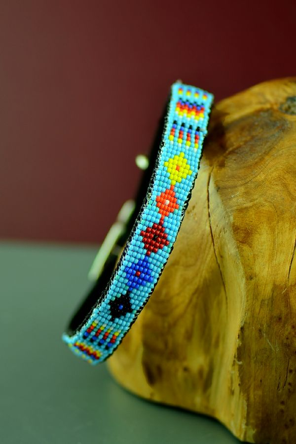 Beaded Medicine Eye and Prayer Feather Dog Collar